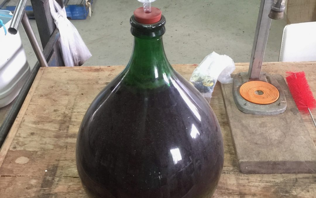 Demijohn full of fruit wine