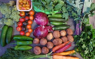 Veggie CSA delivering to Thornbury