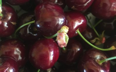 Cherries on special!